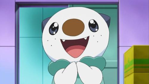 WHY U NO POST MOAR? - Page 3 Pokemon-oshawott-cute